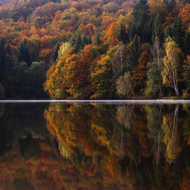 Lake as a mirror