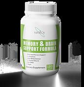 Memory & Brain Supoort.png