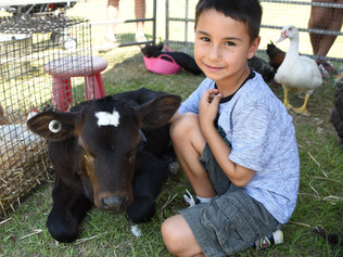 Record Numbers at Small Farming Expo