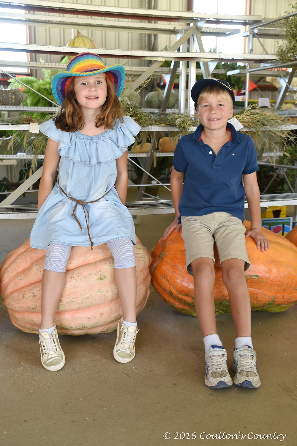 Vivienne and Lochlan Fraser, Chinchilla, were impressed by the size of the pumpkins.