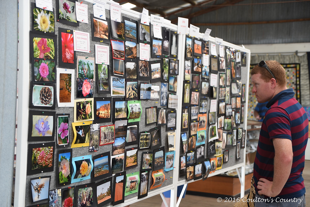 Over 450 images were exhibited at the 2016 Wandoan Show.