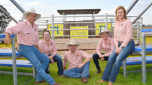 A Day In The Life Of.....A Cooinda Bull Sale