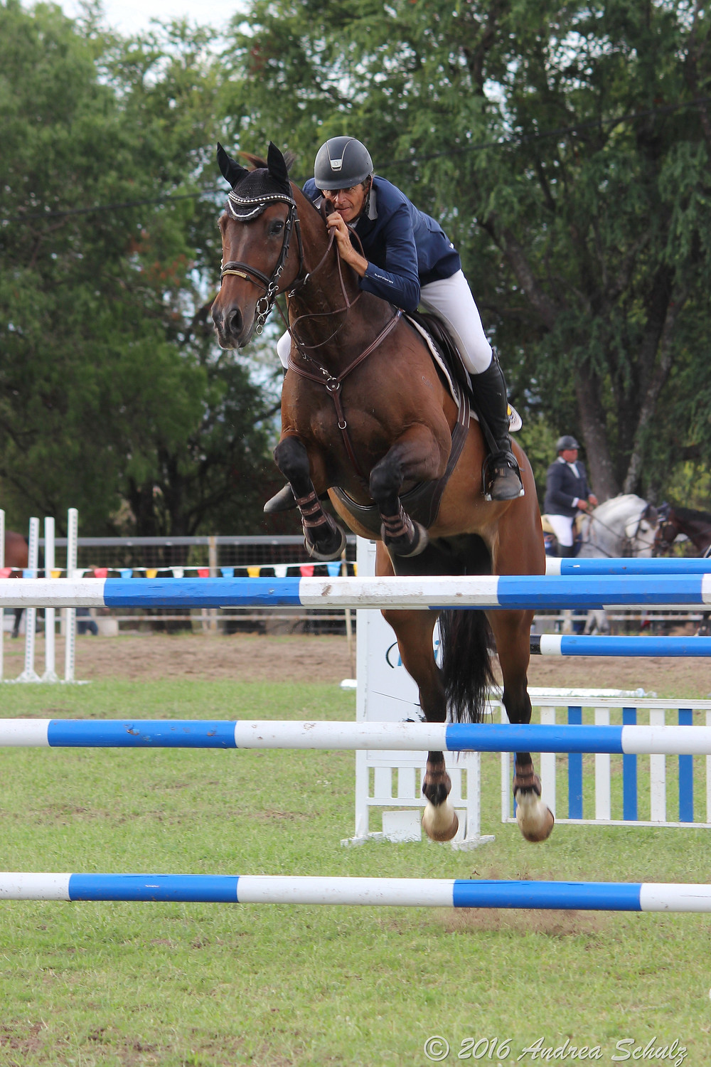 Show jumpers from Qld, NSW and Victoria competed at this year's Taroom Show.