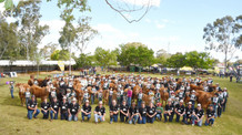 Kids & Cattle On Show At Pittsworth