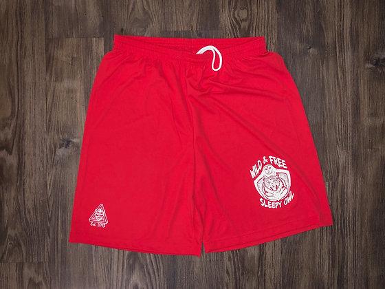 Wild & Free athletic shorts
