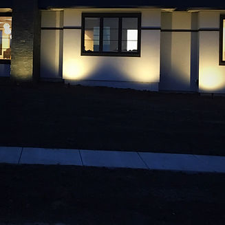 landscape lighting up-lighting design_edited.jpg