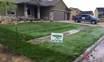 New Construction Sod Installation