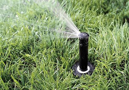 lawn irrigation head.jpg