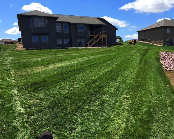 Premium sod rolls out as clean as new carpet