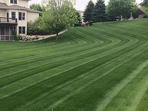 Fertilizer Lawn Care.jpg