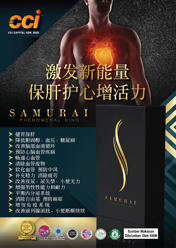 Samurai-Flyers-A5-Front-Chinese.png