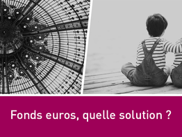 Fonds euros, quelle solution ?