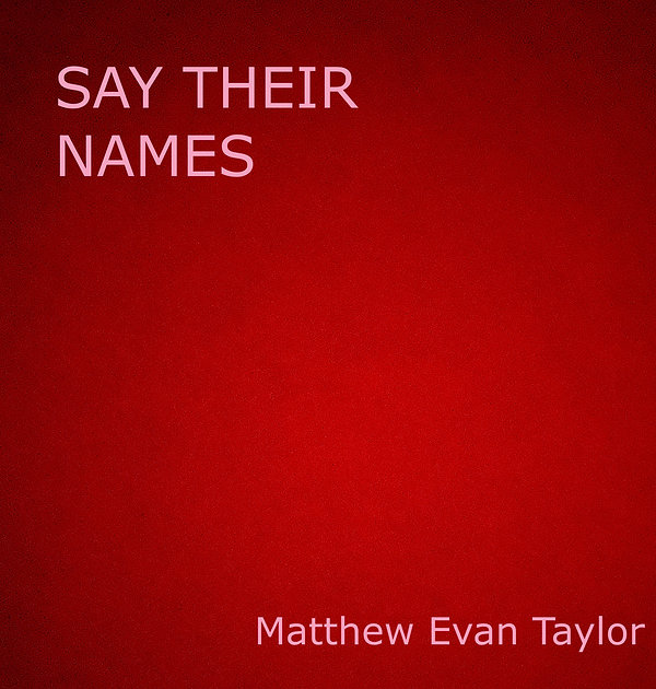Say Their Names Cover.jpg
