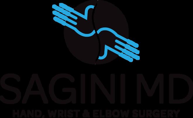 SAGINI Logo transparent.png