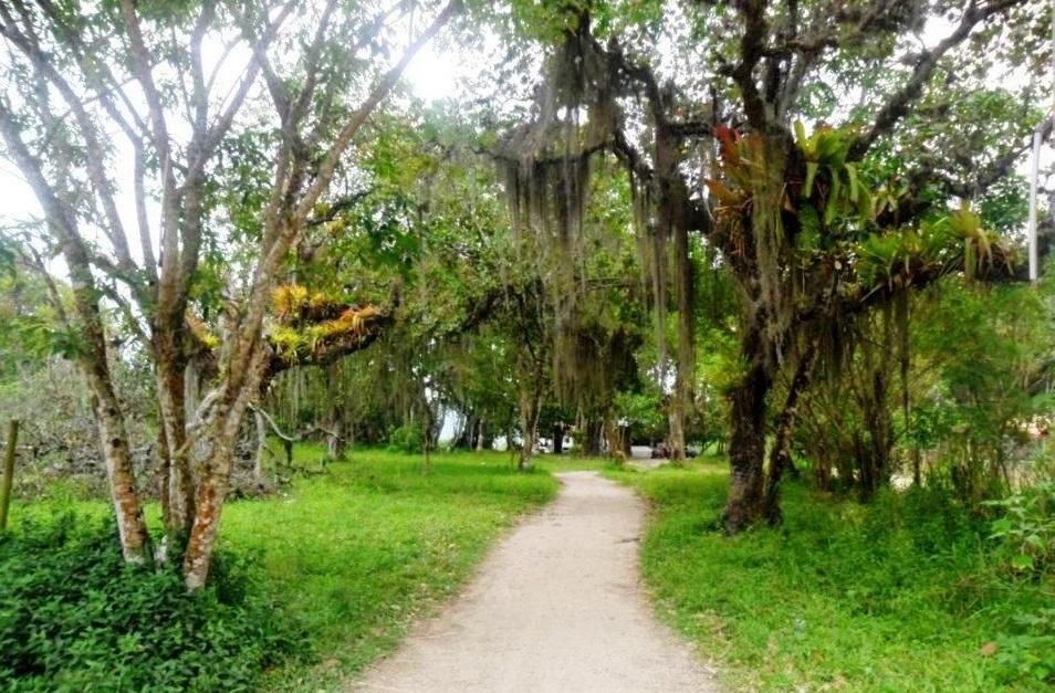 Caminho para praia de Parati-mirim
