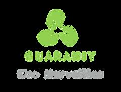 logo guaraniy eco merveilles.png