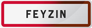 maintenance informatique Feyzin 69320