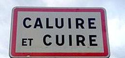 maintenance informatique Caluire et Cuire 69300