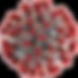 coronavirus_PNG46.png
