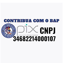 CONTRIBUA COM O BAP.jpg