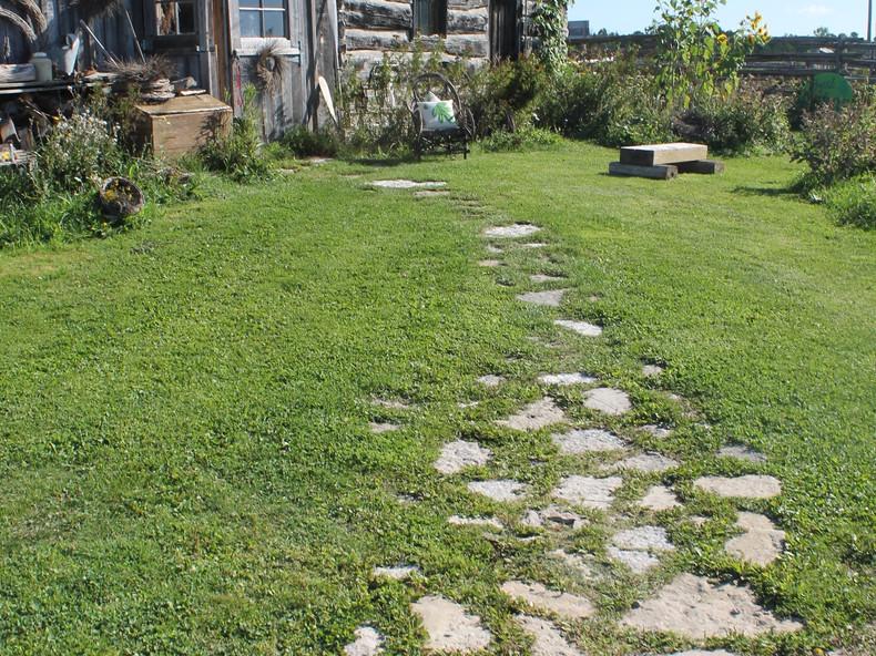 The Stone Path