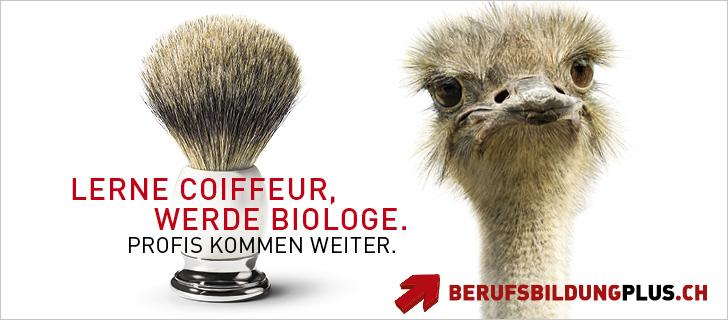 Sujet Kampagne berufsbildungplus.ch