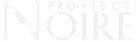 PN Transparent White Logo.png