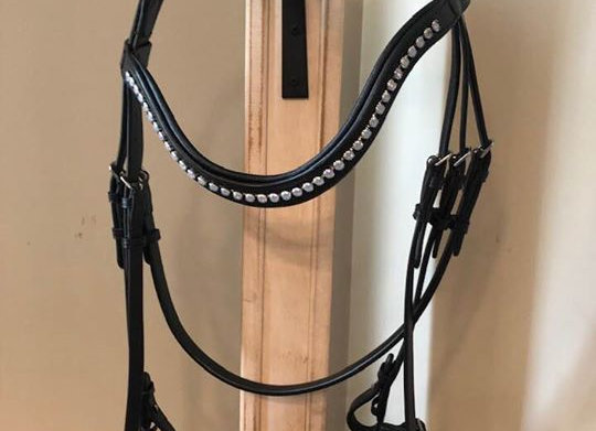 Single Black Bridle