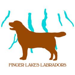 Finger Lakes Labradors Revised Logo Instagram Feed 1080 x 1080