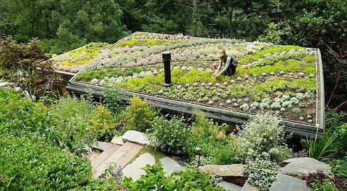 Mill-Valley-Cabins-Sedum-Succulent-Roof.
