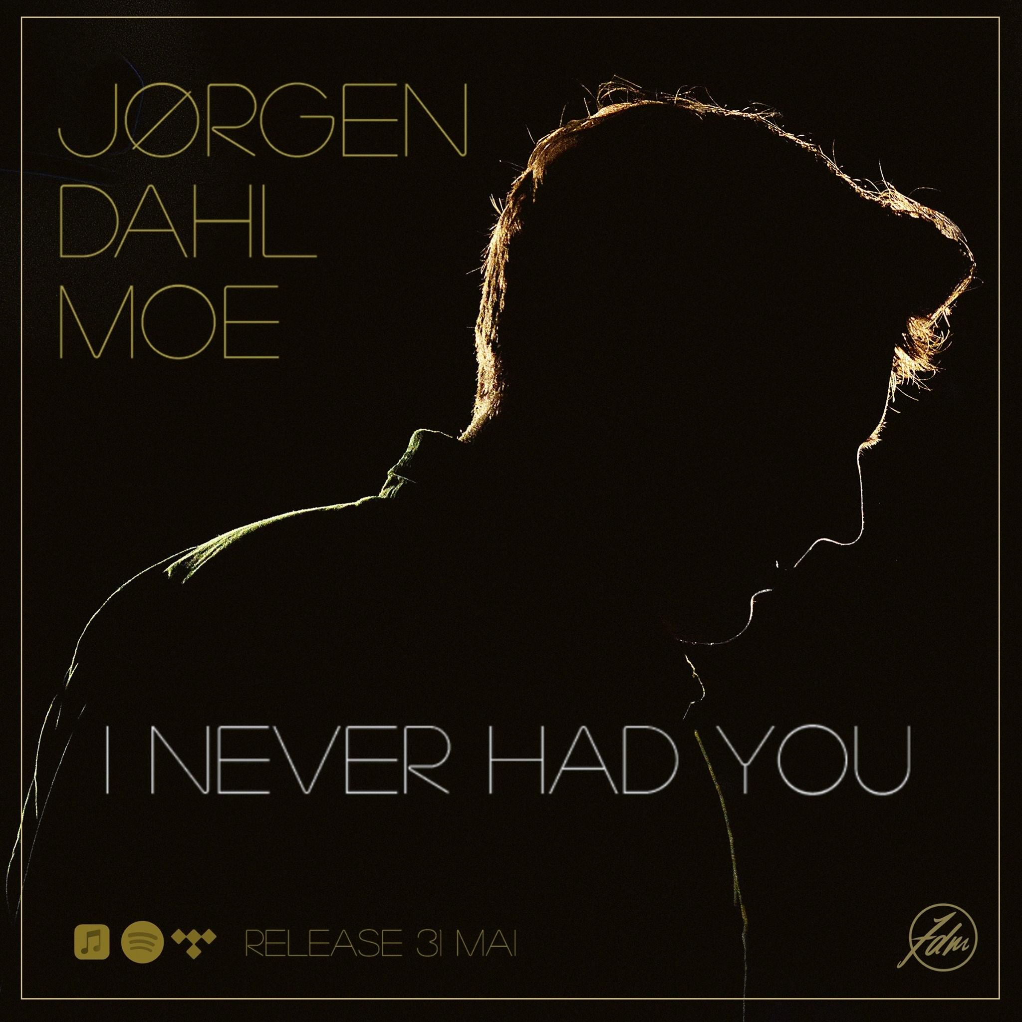 Jørgen Dahl Moe - I Never Had You
