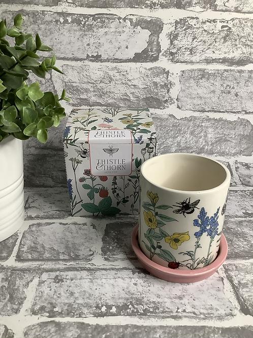 Herb Pot/Mini Planter