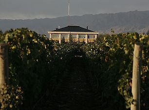 Mendoza Estancia Wine hotel.jpg