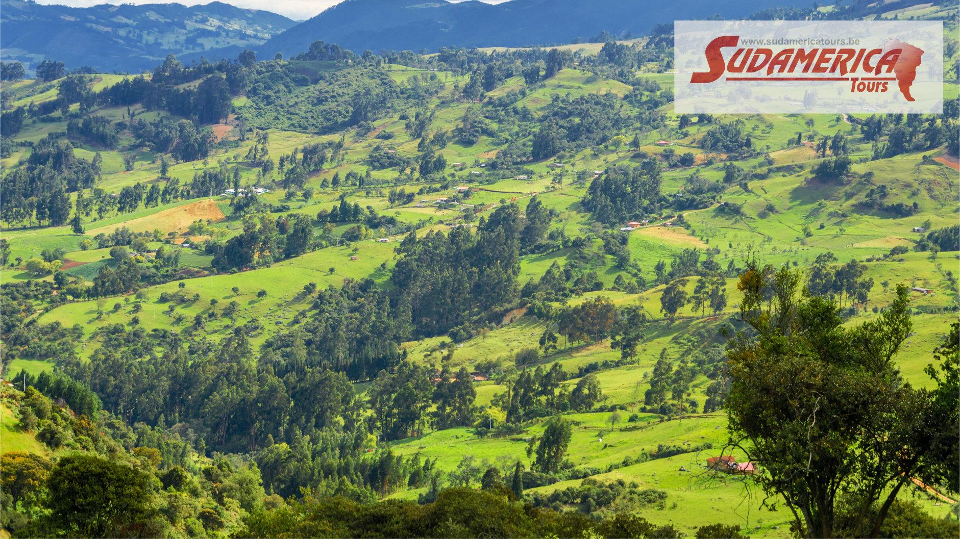 Colombie_Café_3