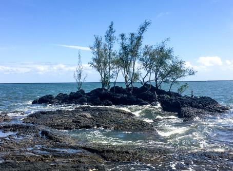 A Hui Ho (Until Next Time) Hawaii!