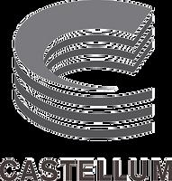 castellum-portrait-jpeg_edited.png