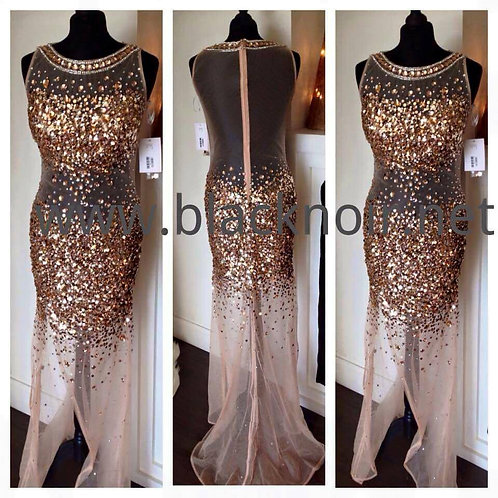 Nude/Gold evening party dress