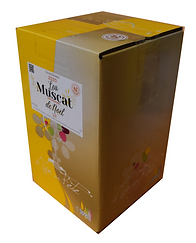 bib-5-litres-muscat-de-noel-sec-vin-de-f