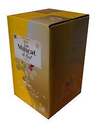 bib-5-litres-muscat-de-noel-moelleux-vin