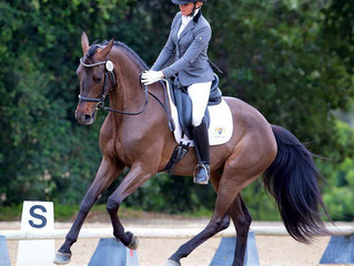 3 Members to Ride at Carl Hester Clinic