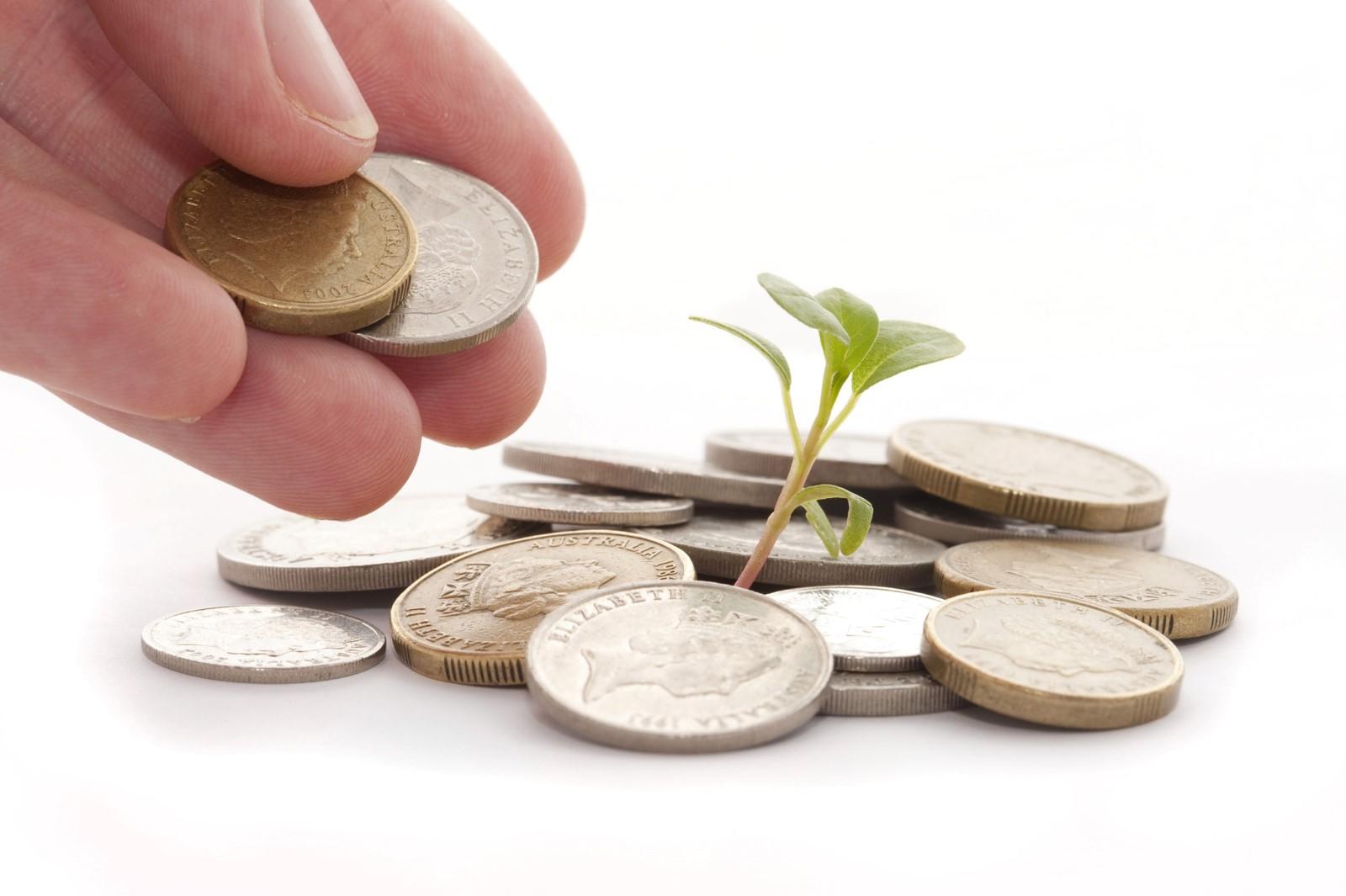 grow money