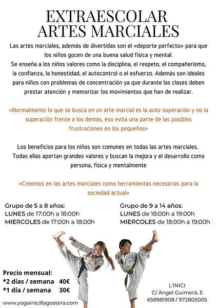 EXTRAESCOLAR ARTES MARCIALES.jpg