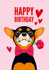 Chihuahua Flower Birthday Card