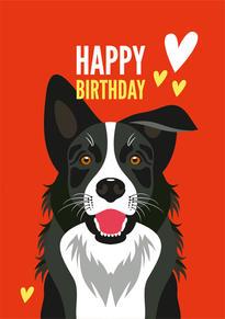 Border Collie Hearts Birthday Card