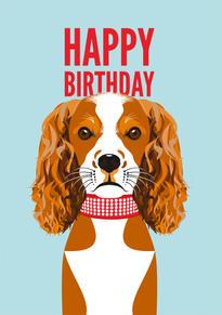 King Charles Birthday Card