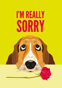 Basset Hound Sorry Card