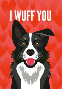 Border Collie Anniversary & Valentine Card