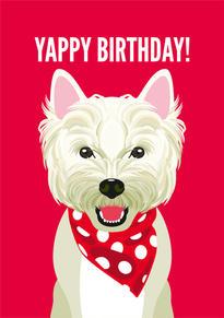 Westie Terrier Birthday Card