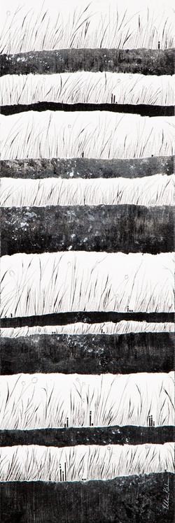 Grasses: B&W - 8x24, $450