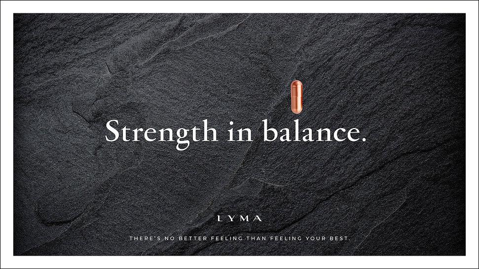 LYMA campaign visual 2 72p.jpg